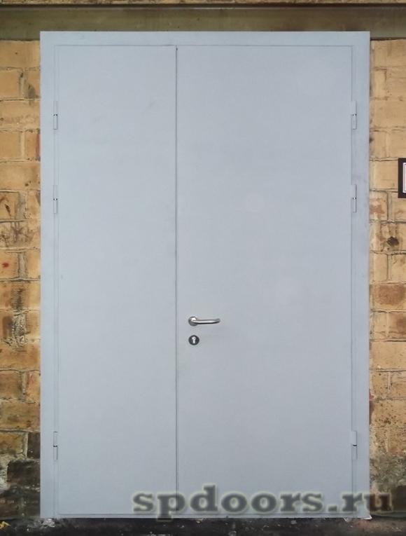 Противопожарная двупольная дверь